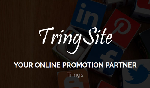 Tringsite (More than a Website)